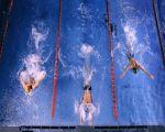 заплыв на 100м